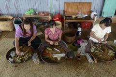 ASIA MYANMAR NYAUNGSHWE TABACCO FACTORY Royalty Free Stock Image