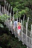 ASIA SINGAPORE JURONG BIRD PARK. A bridge in the Jurong Bird Park in the city of Singapore in Southeastasia Stock Photography