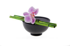 Asia still life orchid Stock Image