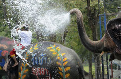 ASIA THAILAND AYUTTHAYA SONGKRAN FESTIVAL. The Thai New Year or Songkran Festival or Water festival in the city of Ayutthaya north of Bangkok in Thailand in Royalty Free Stock Images