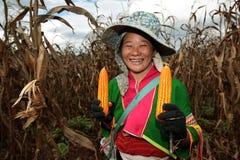 ASIA THAILAND CHIANG MAI FARMING Stock Image