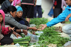 ASIA THAILAND CHIANG RAI MAE SALONG MARKET Royalty Free Stock Photos