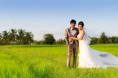 Asia Wedding couple Royalty Free Stock Image