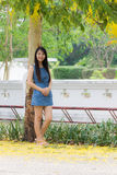 Asia woman with Cassia fistula Royalty Free Stock Photography