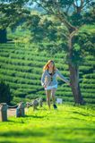 Asia woman running on green grass at tea garden. Asia women running on green grass at chuifong tea garden in Chiangrai Thailand royalty free stock image
