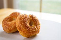 Asiago & Cheddar Cheese Bakery Fresh Bagel Royalty Free Stock Photography