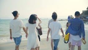 Asian adults men and women having fun walking on beach. Group of young asian adults men and women having fun walking on beach, rear view stock video