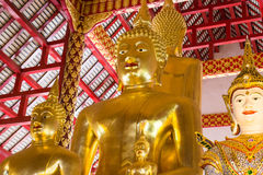 Asian angel and golden buddha statue Stock Images
