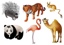Asian animals (). Six asian animals - porcupine, tiger, jerboa, panda, flamingo and camel - drawn in kind child style Royalty Free Stock Photo