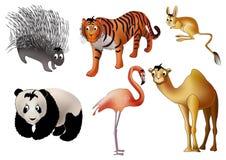 Free Asian Animals () Royalty Free Stock Photo - 18303415