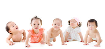 Asian babies. Group of asian crawling babies Royalty Free Stock Image