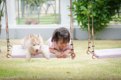 Asian baby  baby on swing with puppy Royalty Free Stock Photo