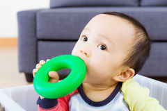 Asian baby boy bite toy Stock Images
