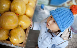 Asian baby boy buying the fruit pomelo Royalty Free Stock Photography