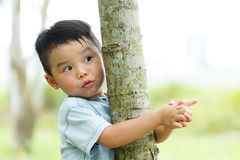 Asian baby boy climb up tree. Asian baby boy climb up for tree royalty free stock photography