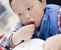 Asian baby boy enjoying the food in the plate Stock Photos