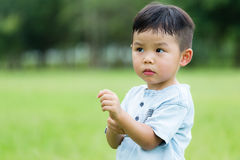 Asian Baby boy feeling itchy. On hand royalty free stock photography