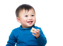Asian baby boy holding toy block Royalty Free Stock Image