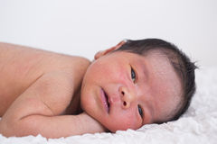 Asian baby boy Royalty Free Stock Photos