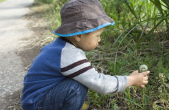 Asian baby boy playing dandelion at countryside Royalty Free Stock Photography