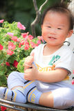 Happy Asian baby boy playing in a garden Royalty Free Stock Images