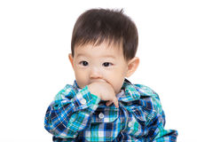 Asian baby boy suck finger Royalty Free Stock Photography