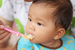 Asian baby boy to eating food in concept of health foods and nut. Rition for development and growth stock image