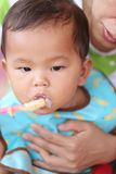 Asian baby boy to eating food in concept of health foods and nut. Rition for development and growth stock images