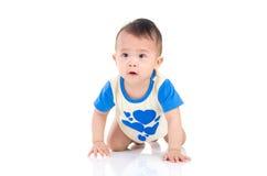 Asian baby. Crawling beautiful asian baby boy stock photos