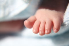 Asian baby foot Royalty Free Stock Images