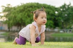 Asian baby girl crawling on green grass in the park. At sunset. Happy family concept stock photo