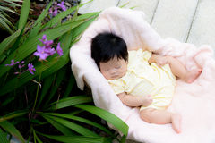 Asian baby  girl sleep in the garden Royalty Free Stock Images