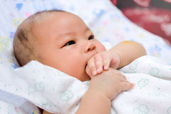 Asian baby keep hand in the mouth Stock Photos