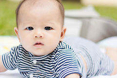 Asian baby lie prone on ground at park. Cute Asian baby lie prone on ground at park Royalty Free Stock Photography