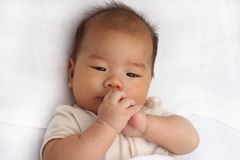 Asian baby playing Stock Photography