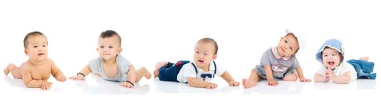 Asian baby playing together. Group of asian babies crawling on the floor royalty free stock photo