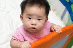 Asian baby in playpen Stock Photos