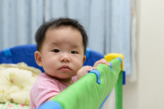 Asian baby in playpen Royalty Free Stock Photo