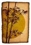 Asian Bamboo on grunge cardboard, Illustration Royalty Free Stock Image