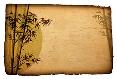 Asian Bamboo on grunge cardboard, Illustration Stock Photos