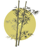 Asian Bamboo illustration Royalty Free Stock Images