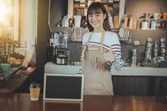 Asian barista standing at counter bar and hand showing thumb up. Smiling asian barista standing at counter bar and hand showing thumb up. Cafe restaurant Royalty Free Stock Photo