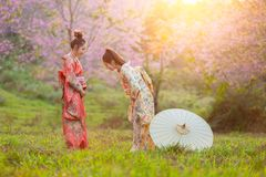 Asian beautiful woman wearing traditional japanese kimono and cherry blossom in spring, Japan greetings royalty free stock photos