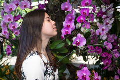 Asian beautiful young woman in the garden Royalty Free Stock Images