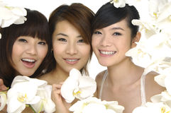 Asian beauty Royalty Free Stock Photo
