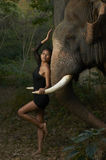 Asian Beauty With Friendly Elephant Stock Photos