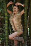 Asian Beauty In Jungle Royalty Free Stock Photography