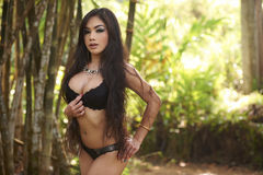 Asian Beauty In Jungle Stock Image