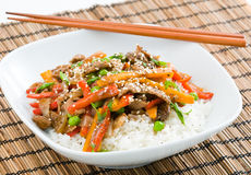 Asian Beef Stir-Fry Royalty Free Stock Photos