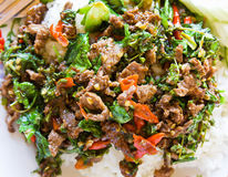 Asian beef stir-fry Royalty Free Stock Images